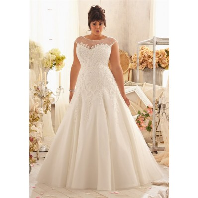 Elegant A Line Bateau Illusion Neckline Cap Sleeve Organza Lace Plus Size Wedding Dress