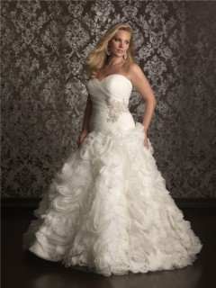 Ball Gown sweetheart chapel train organza plus size wedding dress with beading