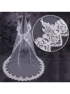 Royal Princess Tulle Lace Cathedral Length Wedding Bridal Veil