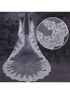 Traditional One Tier Tulle Lace Long Cathedral Wedding Bride Veil