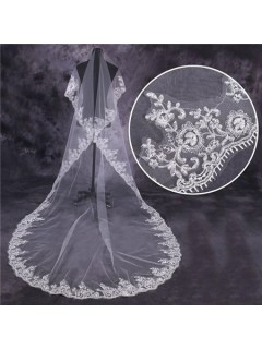 Vintage One Tier Tulle Lace Long Chapel Wedding Bride Veil